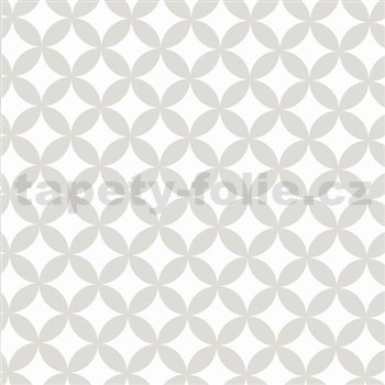 Statická fólia transparentná Elliott White 45 cm x 15 m