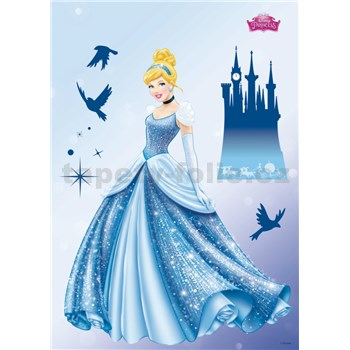 Samolepky na stenu Disney Princess Dream rozmer 50 cm x 70 cm