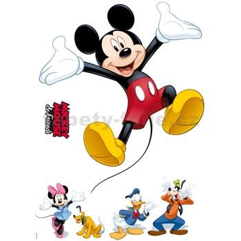 Samolepky na stenu Disney Mickey a priatelia rozmer 50 cm x 70 cm