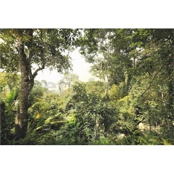 Vliesové fototapety džungle rozmer 368 cm x 248 cm