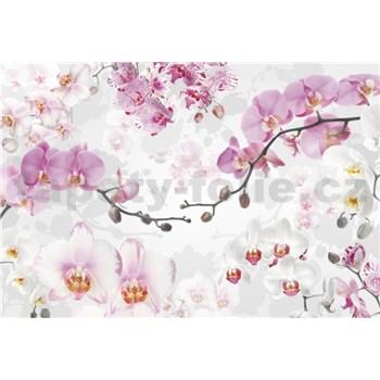 Vliesové fototapety orchidea rozmer 368 cm x 248 cm