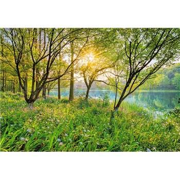 Fototapety Spring Lake, rozmer 368 x 254 cm