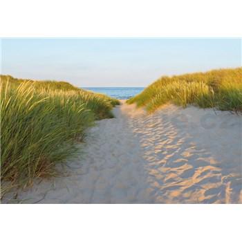 Papierové fototapety Sandy Path 368 cm x 254 cm