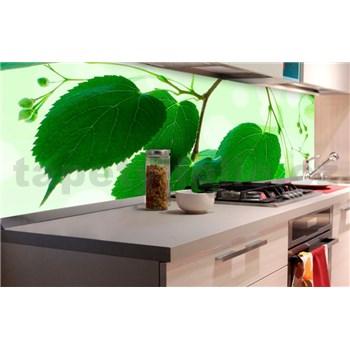 Samolepiace tapety za kuchynskú linku zelené listy rozmer 180 cm x 60 cm