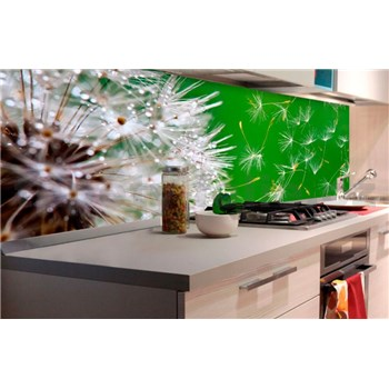 Samolepiace tapety za kuchynskú linku púpavy rozmer 180 cm x 60 cm