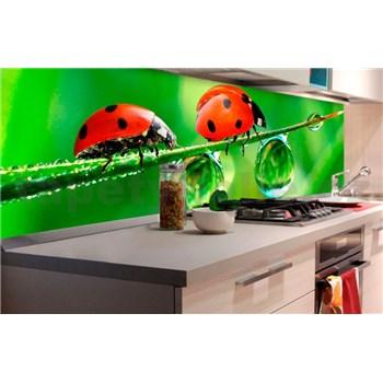 Samolepiace tapety za kuchynskú linku lienka rozmer 180 cm x 60 cm