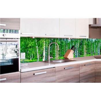 Samolepiace tapety za kuchynskú linku brezový les rozmer 260 cm x 60 cm