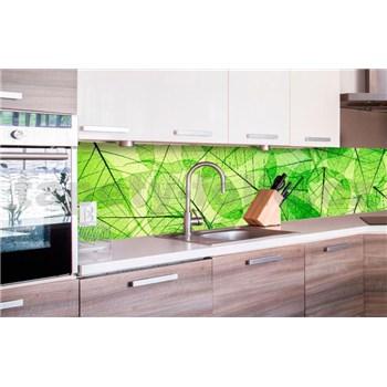Samolepiace tapety za kuchynskú linku listové žily rozmer 260 cm x 60 cm