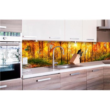 Samolepiace tapety za kuchynskú linku slnečný les rozmer 260 cm x 60 cm