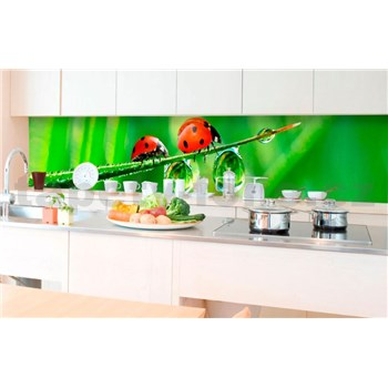 Samolepiace tapety za kuchynskú linku lienka rozmer 350 cm x 60 cm