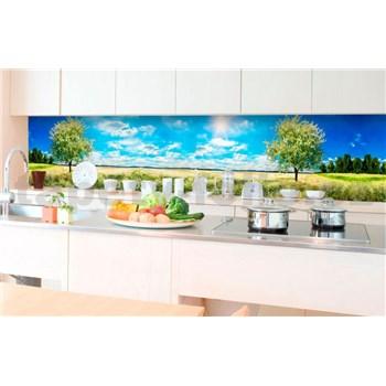 Samolepiace tapety za kuchynskú linku rozkvitnutý strom rozmer 350 cm x 60 cm