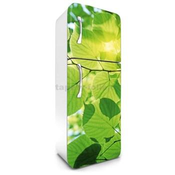 Samolepiace tapety na chladničku zelené listy rozmer 180 cm x 65 cm