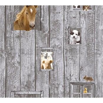 Detské vliesové tapety na stenu Little Stars zvieratá na sivom drevenom podklade