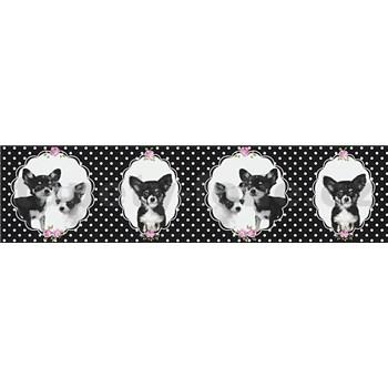Detské vliesové bordúry Little Stars čivava na čiernom podklade