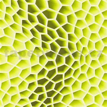 Vliesové tapety na stenu Harmony in Motion by Mac Stopa 3D plástu zelené