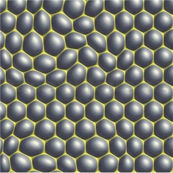 Vliesové tapety na stenu Harmony in Motion by Mac Stopa 3D bubliny sivé so zelenými kontúrami