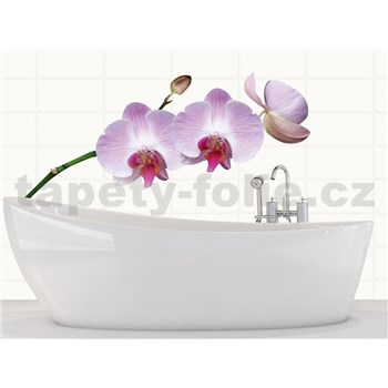 Samolepky na stenu Orchids 65 cm x 165 cm