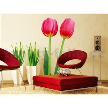 Samolepky na stenu Tulips 65 cm x 165 cm