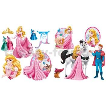 Samolepky na stenu Princezná rozmer 30 x 40 cm