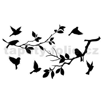 Samolepky na stenu ptáci