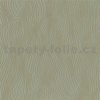 Vliesové tapety IMPOL New Modern nepravidelné vlnovky zelené