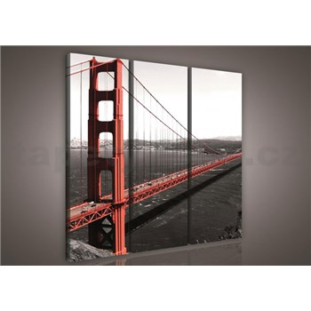 Obraz na plátne Golden Gate Bridge 90 x 80 cm