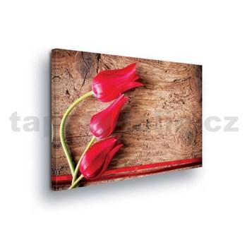 Obraz na stenu tulipány na dreve 100 x 75 cm