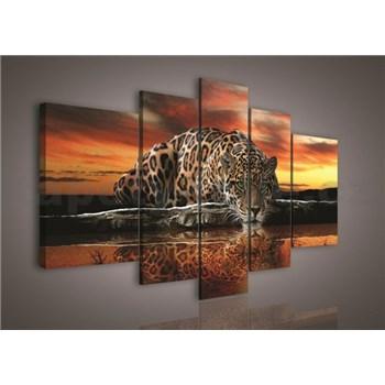 Obraz na plátne Jaguar 170 x 100 cm