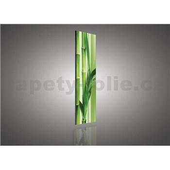 Obraz na stenu bambus 145 x 45 cm