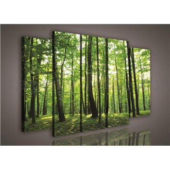 Obraz na plátne les 150 x 100 cm