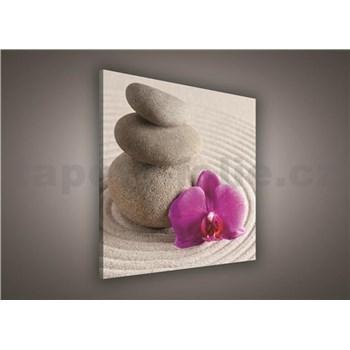 Obraz na stenu wellness orchidea 80 x 80 cm