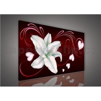 Obraz na stenu ľalie na bordó podklade 75 x 100 cm