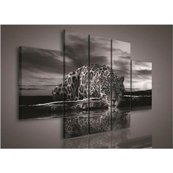 Obraz na plátne Jaguár zelené oči 170 x 100 cm