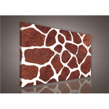 Obraz na stenu žirafia koža 75 x 100 cm