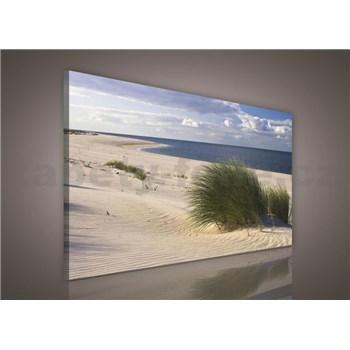 Obraz na stenu piesočná pláž 75 x 100 cm