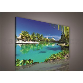 Obraz na stenu Paradise 75 x 100 cm