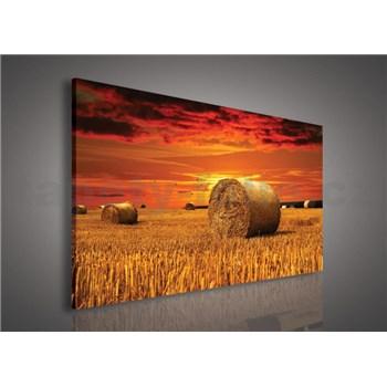 Obraz na stenu západ slnka nad poľom 75 x 100 cm