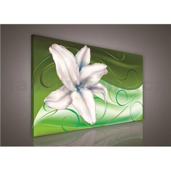 Obraz na stenu ľalia na zelenom podklade 75 x 100 cm