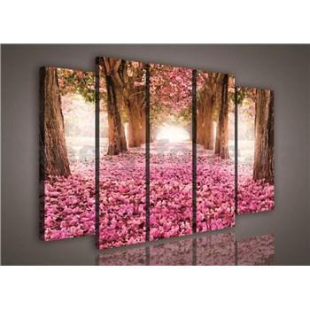 Obraz na plátne alej stromov 150 x 100 cm
