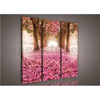 Obraz na plátne alej stromov 90 x 80 cm