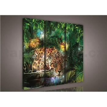 Obraz na plátne jaguár v džungli 90 x 80 cm