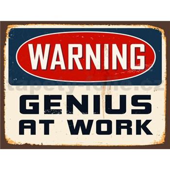 Retro tabula Warning Genius at Work 40 x 30 cm