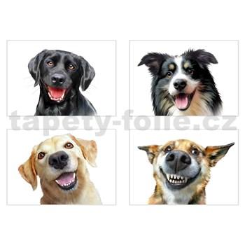 Samolepky na stenu selfie veselí psi rozmer 45 x 65 cm