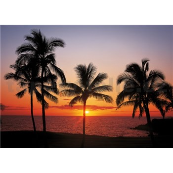 Vliesové fototapety Havaj rozmer 368 cm x 254 cm