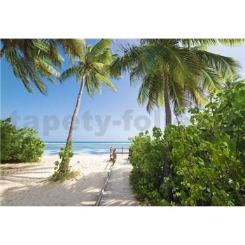 Vliesové fototapety palmová pláž rozmer 368 cm x 254 cm