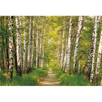 Fototapety brezy, rozmer 368 x 254 cm