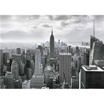 Fototapety New York Black and White, rozmer 368 x 254 cm