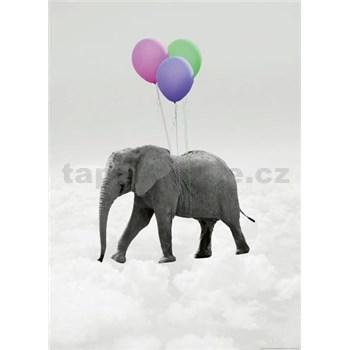 Fototapety slon a balóniky rozmer 184 x 254 cm