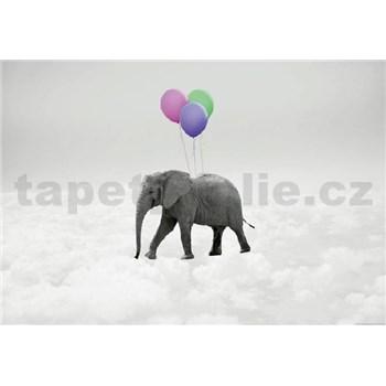Fototapety slon a balóniky rozmer 368 x 254 cm