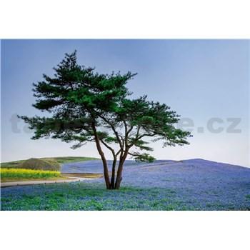 Fototapety strom v poli v Japonsku rozmer 368 x 254 cm